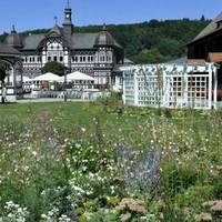 Gradiergarten mit Blumenwiese