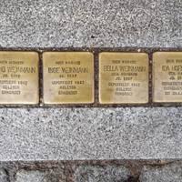 Stolpersteine in der Ratsstraße ©Alina Sauer