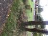 tn_368e712875092a971014ddc3c92734b9.jpg
